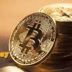 Harga Bitcon yang Kini Semakin Meningkat di Angka 800 Juta