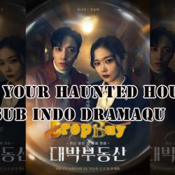 Sell Your Haunted House Sub Indo Dramaqu