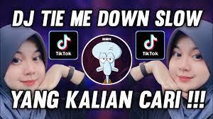 Dj-Tie-Me-Down