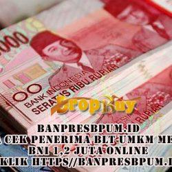 Banpresbpum.id Cara Cek penerima BLT Umkm Mekaar Bni 1,2 Juta Online Klik https//banpresbpum.id