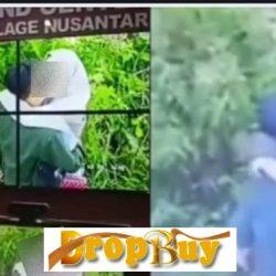 video viral mesum kebun teh kemuning